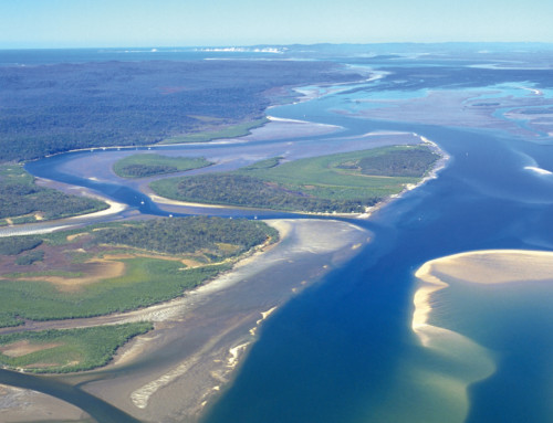'Strait Expectations' – Restoring Great Sandy Strait Ramsar Wetlands